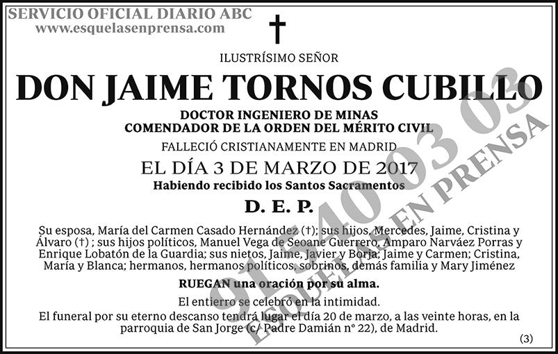 Jaime Tornos Cubillo